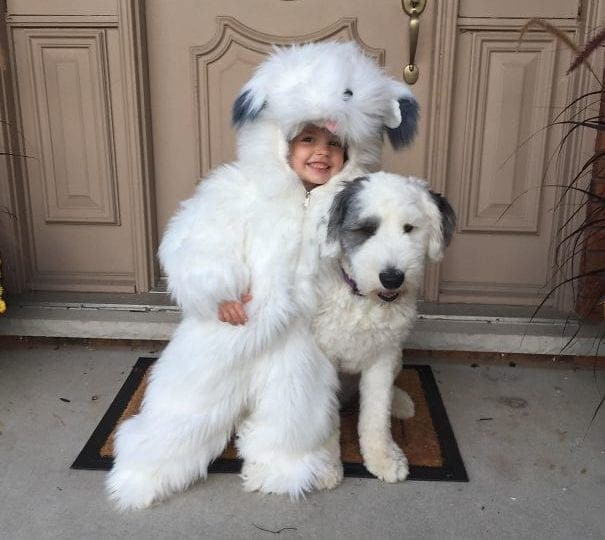 Child win dog costume posing with a dog