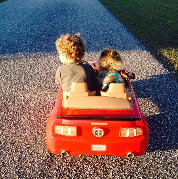 A boy and his dog in a toy car outside