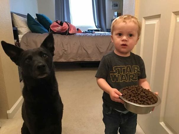 A boy holding a bowl of dogfood standing next to his dog