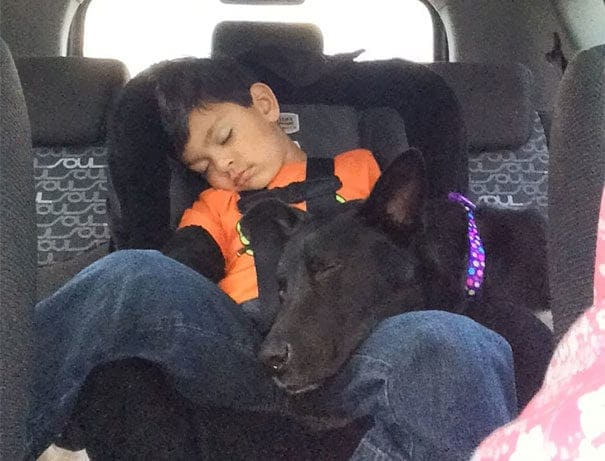 A boy sleeping in his car with a dog