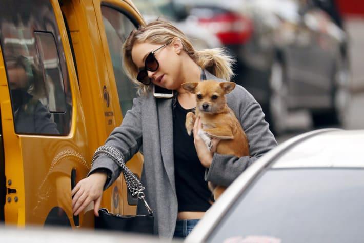 Jennifer Lawrence and her dog