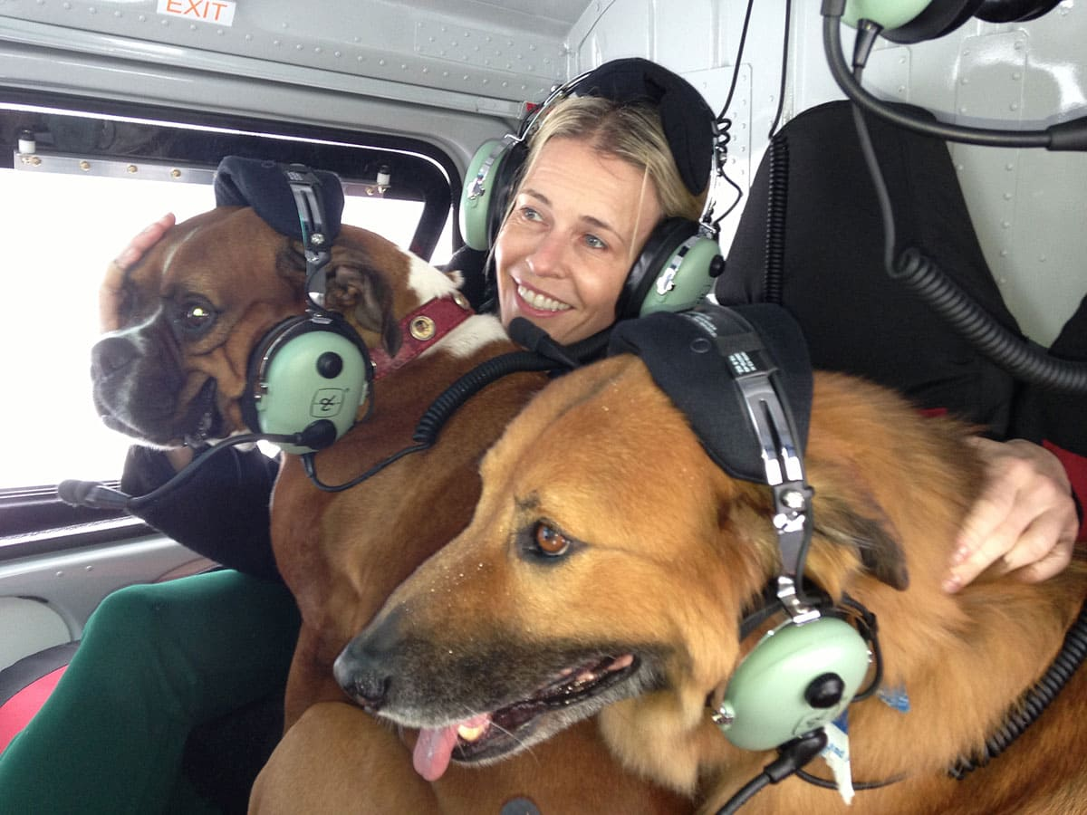 Chelsea Handler and her dogs on a helicopter ride