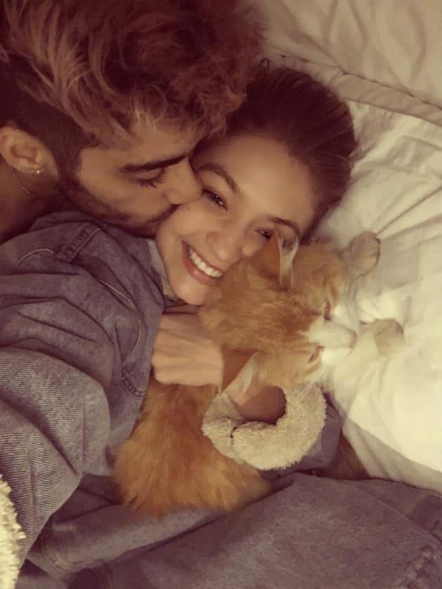 Gigi Hadid, Zayn Malik, and her cat