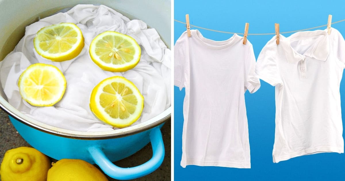 White t-shirts in a pot of lemon water