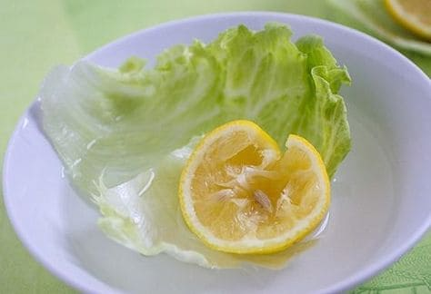 A bowl with lettuce and a lemon