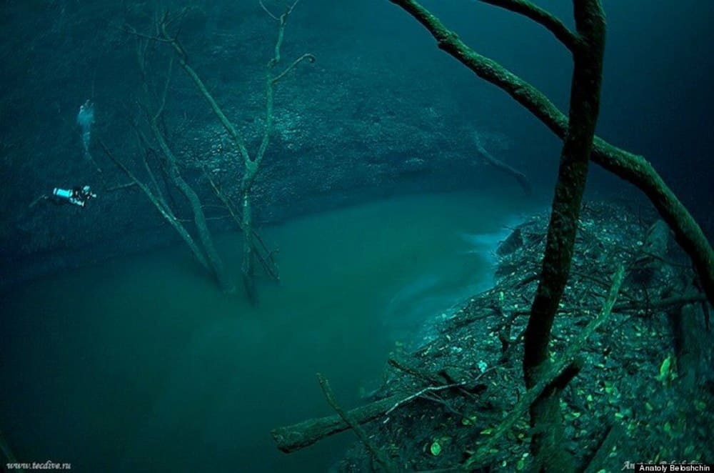 a picture was taken underwater. The picture shows an underwater stream is flowing at the bottom of the river.