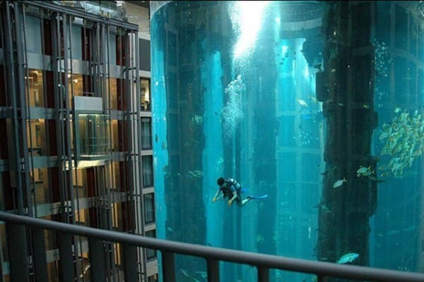 a man diving in an aquarium in the heart of a hotel lobby.