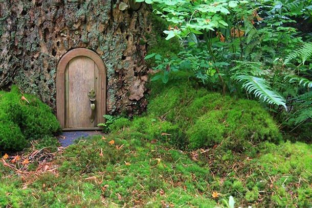 All the Fairy Doors