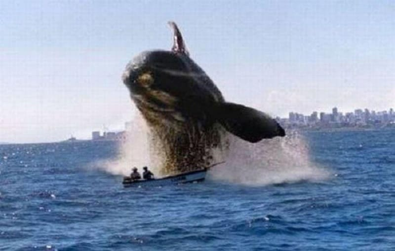 A whale jumping out of the water next to a boat