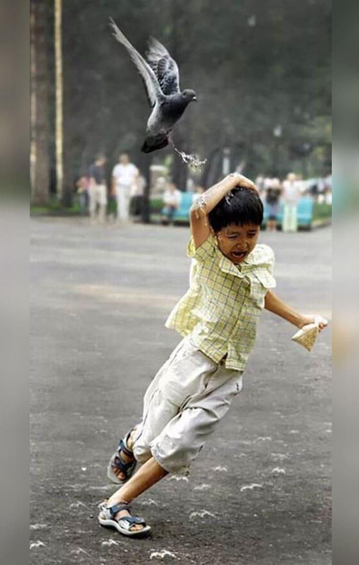 A boy running away from a bird