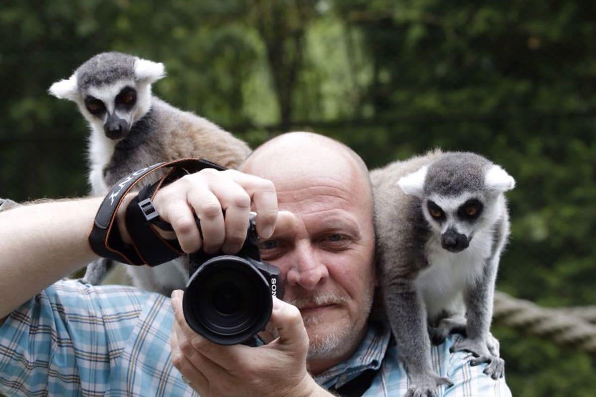 Lemurs were sitting on a photographers shoulders.