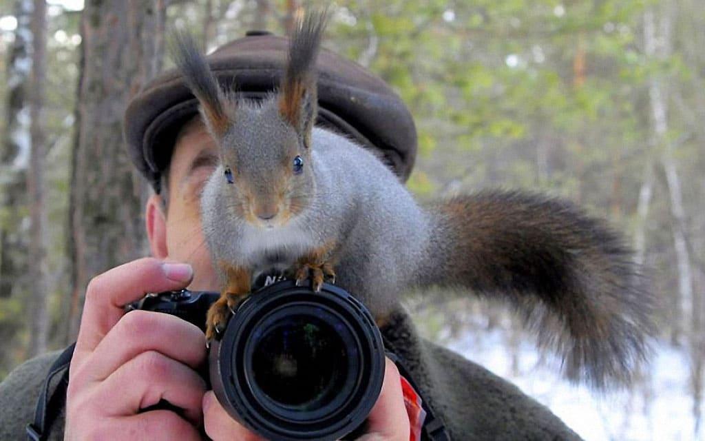 A squirrel sitting on a lens