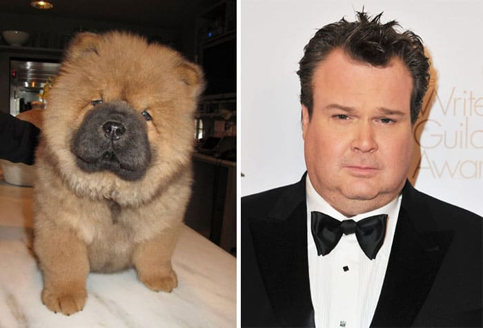 Eric Stonestreet and a dog