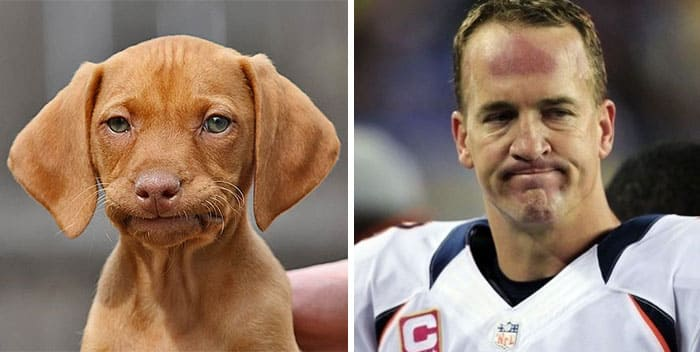 Peyton Manning and a dog
