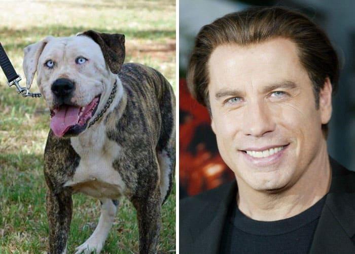 John Travolta and a dog