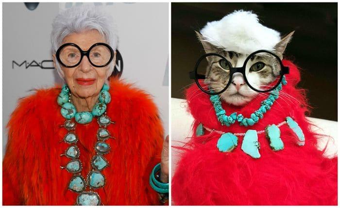 Iris Apfel and a cat