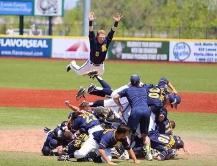 Baseball hurdle