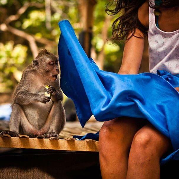 Monkey next to a woman