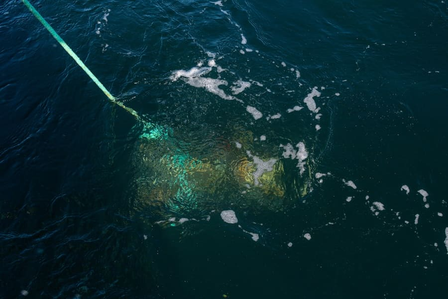 A crab pot is shown being placed in the ocean.