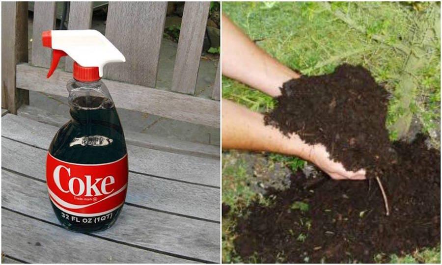 A bottle of Coke and fertilizer