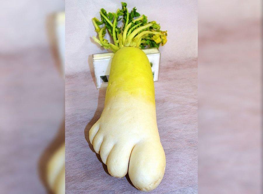 A radish that looks like a foot