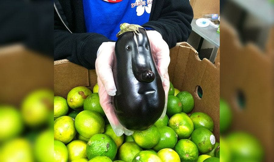An eggplant with a big nose