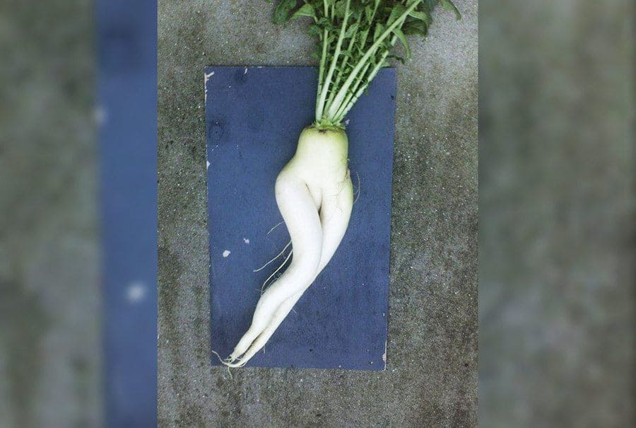 Another sexy looking radish