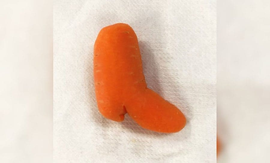 A carrot that looks like a cowboy boot