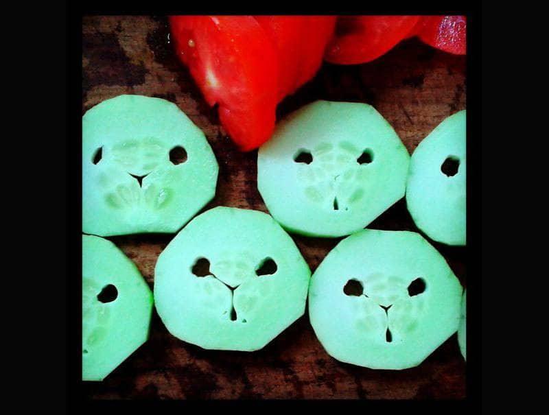 cut up cucumber pieces that6 look like little pandas