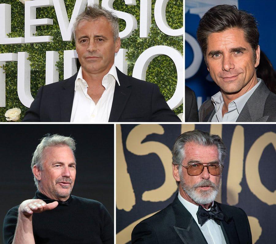 Matt Leblanc, John Stamos, Pierce Brosnan, and Kevin Costner