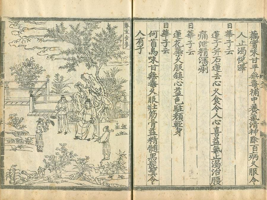 The inside of Yinshan Zhengyao's medicine cookbook.
