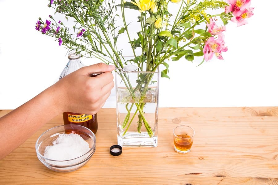A person adding apple cider vinegar and sugar into a vase with water to keep cut flowers fresher.
