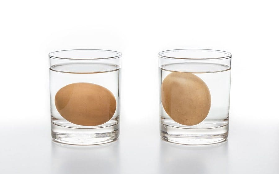 Eggs are placed in glasses of water