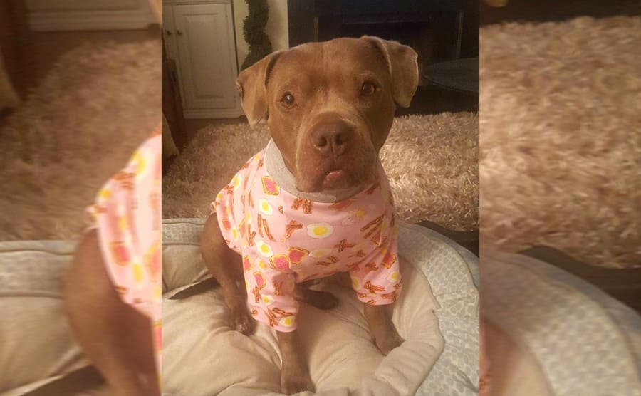 Penny wearing pink pajamas with bacon, eggs, and toast on them