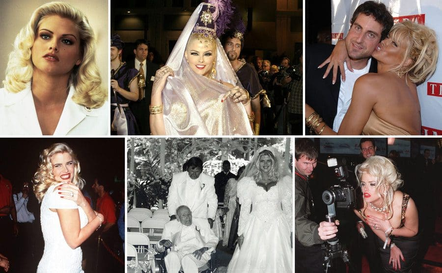 Anna Nicole Smith posing in Naked Gun 33 1/3 / Anna Nicole Smith dressed as a belly dancer with a veil and feather / Anna Nicole Smith and Howard K Stern on the red carpet / Anna Nicole Smith posing in a short white dress on the red carpet / Anna Nicole Smith and J Howard Marshall walking down the aisle / Anna Nicole Smith looking into paparazzi's camera