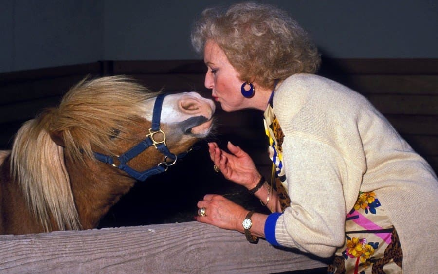 Betty White in a Stable Leaning Over and Kissing a Horse Named Mr. Peanuts