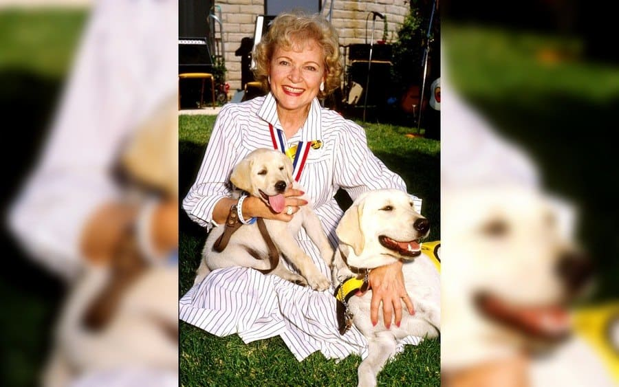 A Color Photo of Betty White Smiling and Looking at the Camera Sitting in the Grass and Holding Two Dogs Named Faith and Vicki in 1986