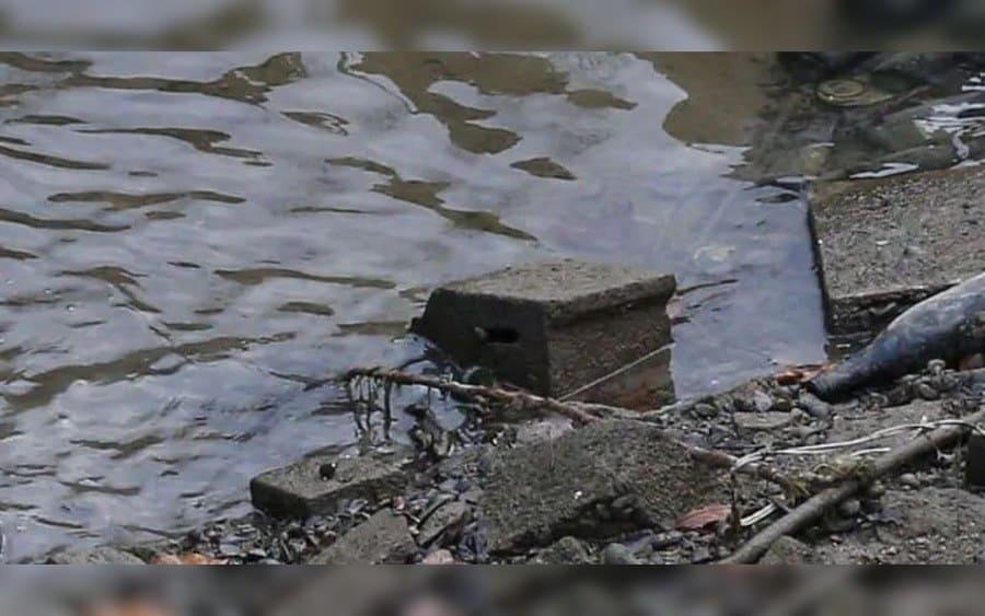 encontrar basura mientras limpia el canal de parís