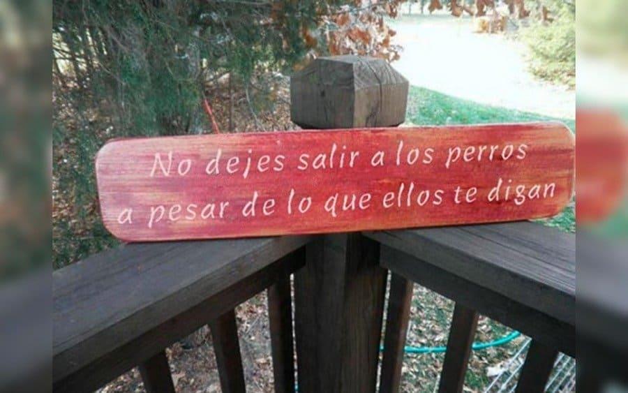Letrero que lee: No dejes salir a los perros, a pesar de lo que ellos te digan