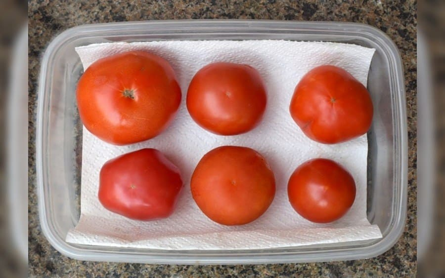 Tomatoes stored with a paper towel