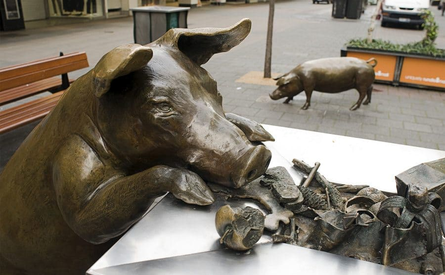 """""""A day Out"""", escultura de cerdos andando libres por paso peatonal, en Adelaida, Australia"""
