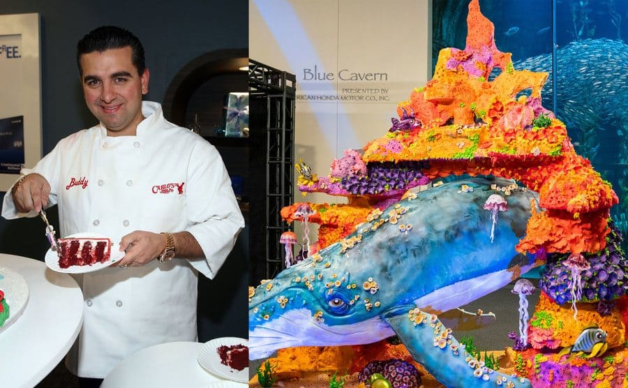 Buddy placing a slice of cake on a plate / A cake with a whale sticking out of it and coral all around it