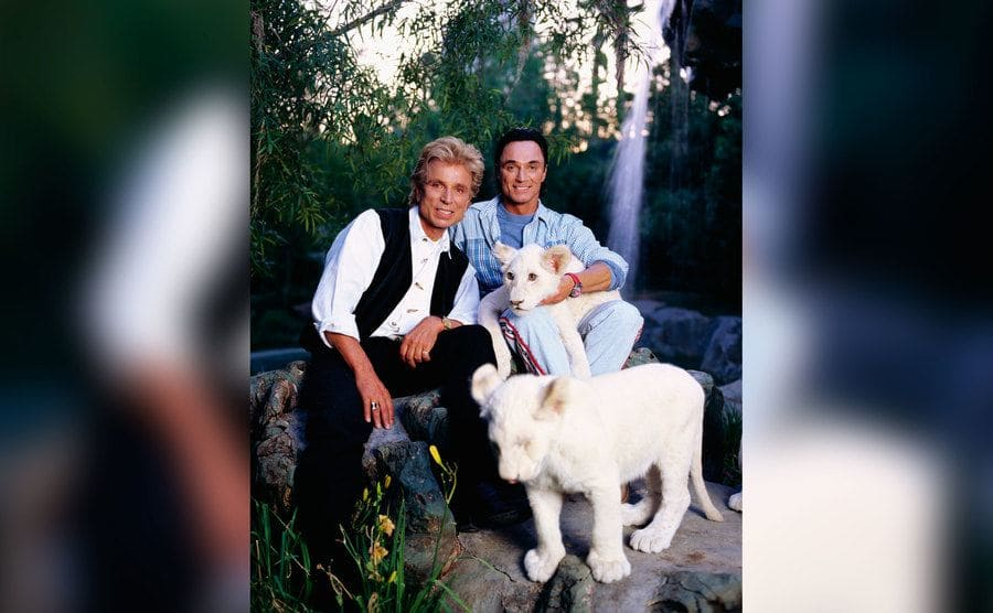 Siegfried and Roy posing for a photo with two of their white tigers.