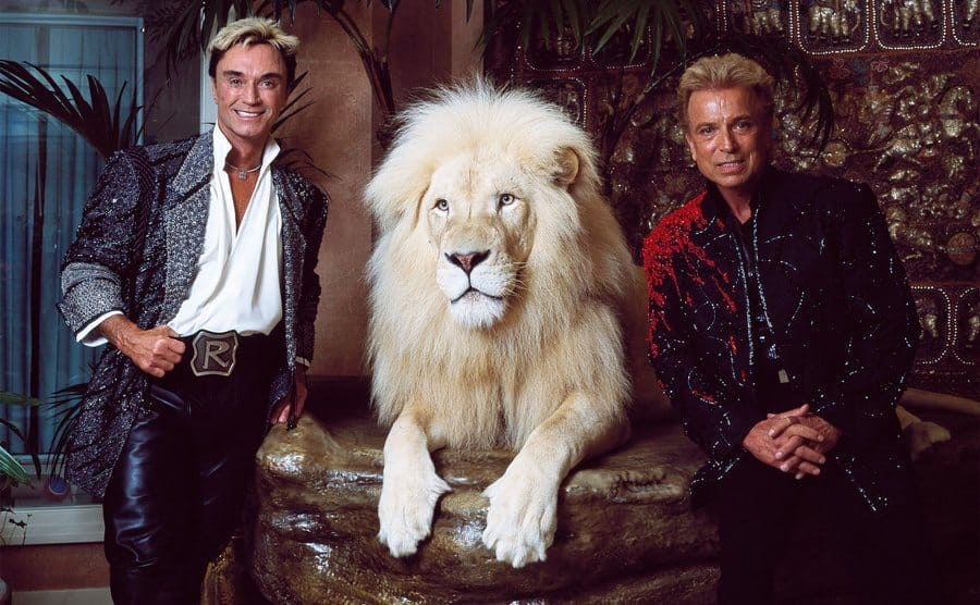 Las Vegas superstar illusionists Siegfried and Roy and a large feline friend at their Mirage Hotel apartment.