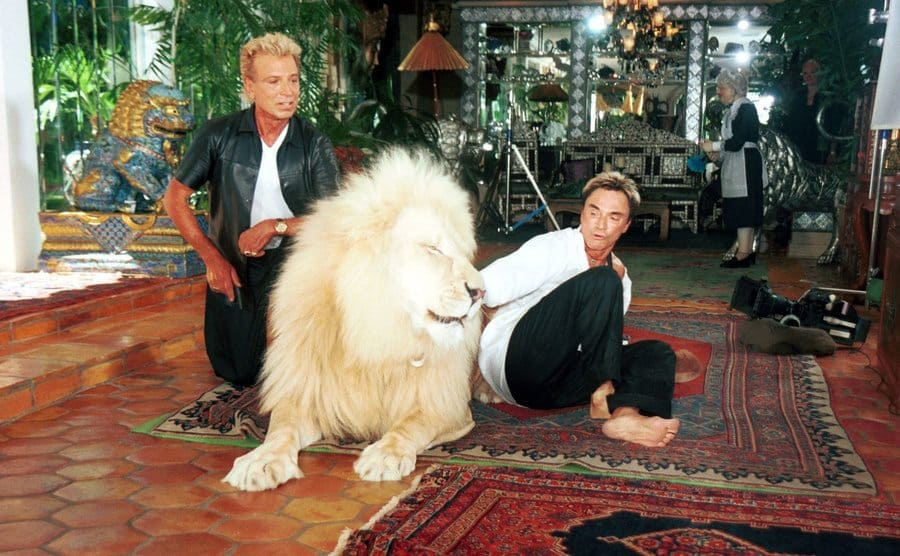 Siegfried and Roy posing for a photo with a white lion looking somewhat alarmed.