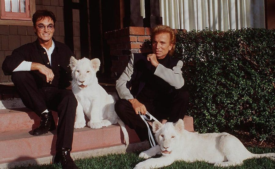 Siegfried and Roy sitting on their front steps holding on to two white tigers.