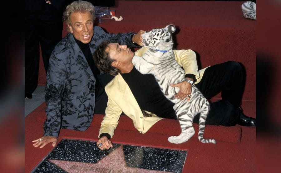 Siegfried Fischbacher and Roy Horn play with a tiger cub