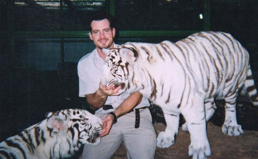 Chris Lawrence feeding two tigers out of his hands.