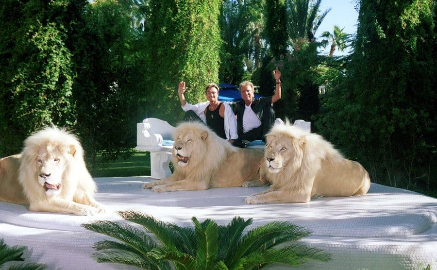Siegfried and Roy posing with three full-size lions.