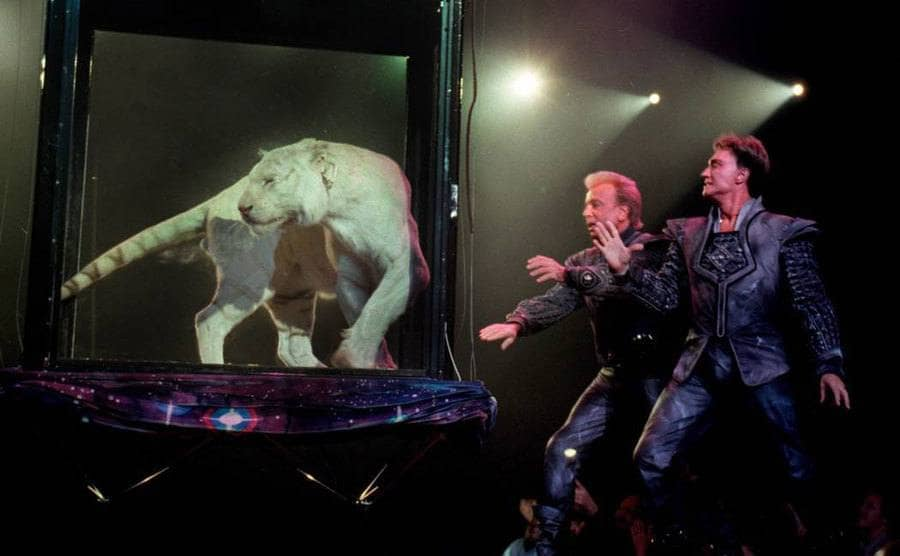 Siegfried and Roy performing on stage with a tiger.